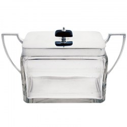 Rectangular Silver and Glass Lidded Box with Ebony Finial